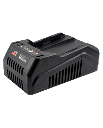 Cargador de baterías 58V Hyundai